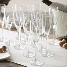 Birch Lane™ Everyday Champagne Flutes BL5373