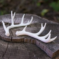 Weddingstar Miniature Faux Antler Place Card Holder WDSR1304